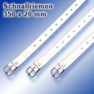 Schnallriemen_1000_10_350_20.jpg